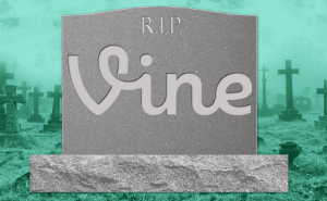 Hurry up and download your Vine videos while you can