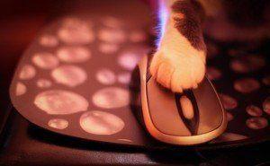 Secret tricks with mouse clicks!