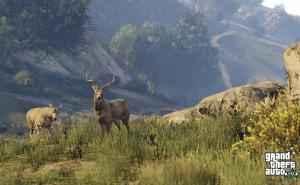 First-Person GTA V with 4K Resolution