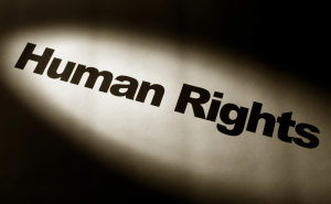 Human Rights Organizations Launch Free Anti-Surveillance Tool